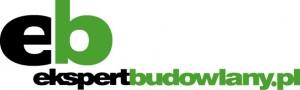 eb_internet_logo zielone